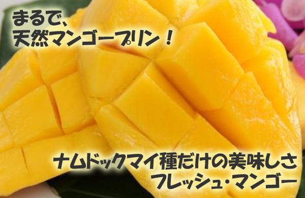 まるで、天然マンゴープリン!ナムドックマイ種だけの美味しさ フレッシュ・マンゴー