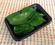 コブみかんの葉
